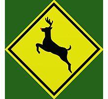 Reindeer crossing  Photographic Print