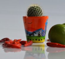 Hot Cactus  Sticker