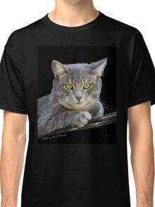 Royal Kitty Kat  Classic T-Shirt