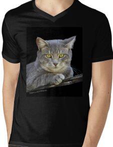 Royal Kitty Kat  Mens V-Neck T-Shirt