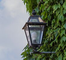 lamp in the street by spetenfia