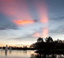 Glory Rays by Donna Adamski