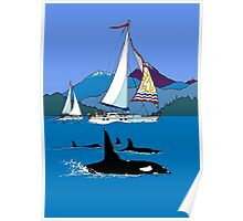 Sailing along the Orcas Poster