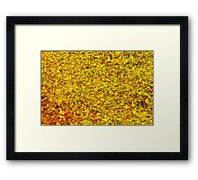 Hojas amarillas - Yellow leaves Framed Print