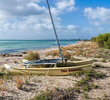 Two Bananas #2, Dunsborough, Western Australia by Elaine Teague