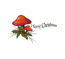 Merry Christmas, Toadstools, Holly, Twigs, Original Art, Holidays by Joyce Geleynse