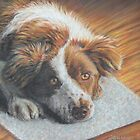 Dog Art - Portrait Painting of a Lovely Dog by AlessandraArt