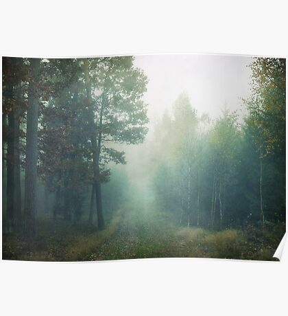 Foggy morning Poster