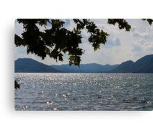 lake scape Canvas Print