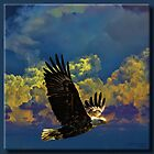 On the Wings of an Eagle by Richard  Gerhard