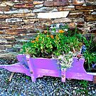 Irish Flowers by Shulie1