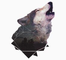 Stars Wolf by INoyZz
