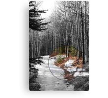 Snowy Forest Path Canvas Print