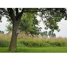Little Birdhouse on the Prairie Photographic Print