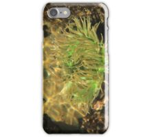 Under the Sea Anemone iPhone Case/Skin