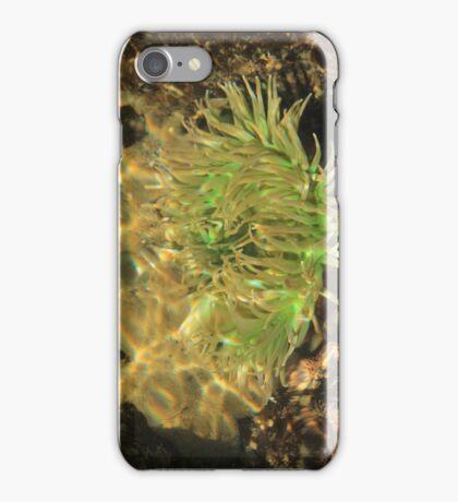 Under the Sea Anemone iPhone Case/Skin