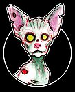 Zombie Sphynx Cat by byronrempel