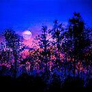 Another Blue Night by ©Janis Zroback