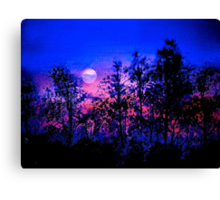 Another Blue Night Canvas Print