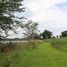 Trail along Mozingo Lake by Ben Waggoner