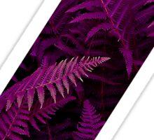 Z purple fern Sticker