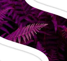 S purple fern Sticker