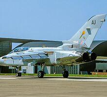 Panavia Tornado F.2 ZD941/AU by Colin Smedley