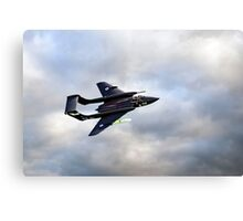 Sea Vixen Canvas Print