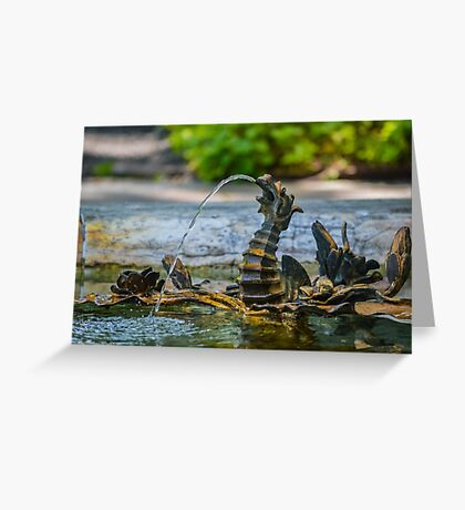 Dragon's Fountain Detail - Kykuit Rockefeller Estate | Sleepy Hollow, New York Greeting Card