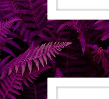 E purple fern Sticker