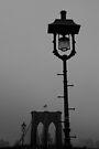 Misty Brooklyn Morning by Paul Finnegan
