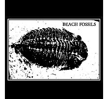 Beach fossils  Photographic Print
