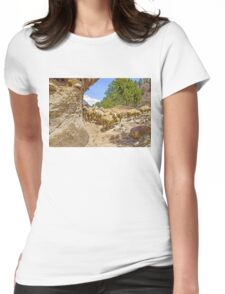 Digital Landscape Painting Womens Fitted T-Shirt