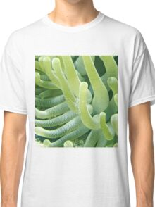 Shrimp on a Green Sea Anemone Classic T-Shirt