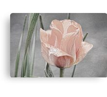 A Touch Of Topaz Canvas Print