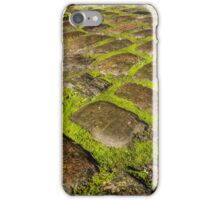 Mossy Cobbles iPhone Case/Skin