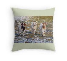 The Three Goats Throw Pillow