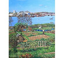 Allotments at Southampton beside River Itchen Photographic Print