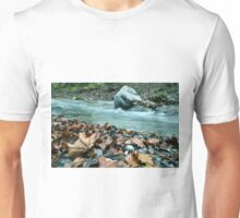 Stream And Autumn Leaves Unisex T-Shirt