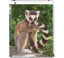 My Tail Looks Great iPad Case/Skin