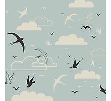 Bird in the sky Photographic Print
