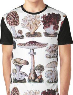 Edible Funghi (1893) Graphic T-Shirt