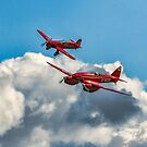 Red Racers by Colin Smedley