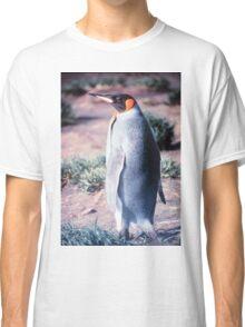 King Penguin on Heard Island Classic T-Shirt