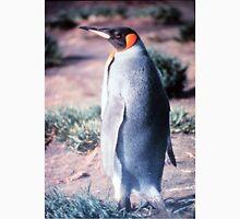 King Penguin on Heard Island Unisex T-Shirt