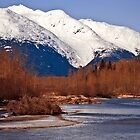 Taiya river in Winter by Yukondick