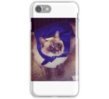 Fuzzy Hero iPhone Case/Skin