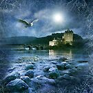Guardian of the Castle by Angie Latham