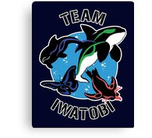 Team Iwatobi Variant Canvas Print