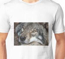 Timber Wolf - Closeup Unisex T-Shirt